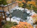 20160409-s-yuterume_autumn.png